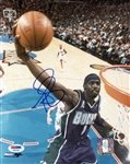 Tim Thomas Signed Bucks 8x10 Photo Authentic Autograph PSA/DNA #T48784
