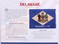 Delaware Willabee & Ward State Flag Patch with Statistics and Collectible Info Card